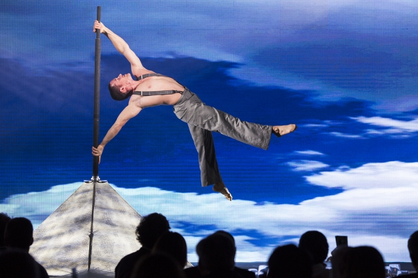Acrobatic performance, artist in the air, emotional show for corporate event